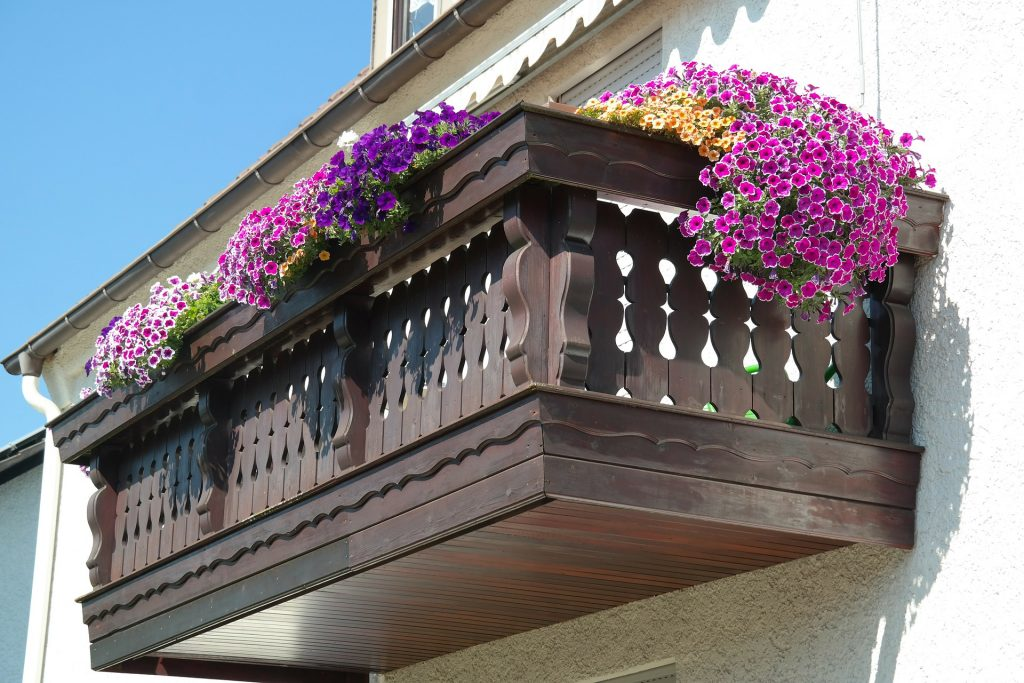 gardening on the balcony, garden gifts for seniors, garden gifts for growers of all kinds.