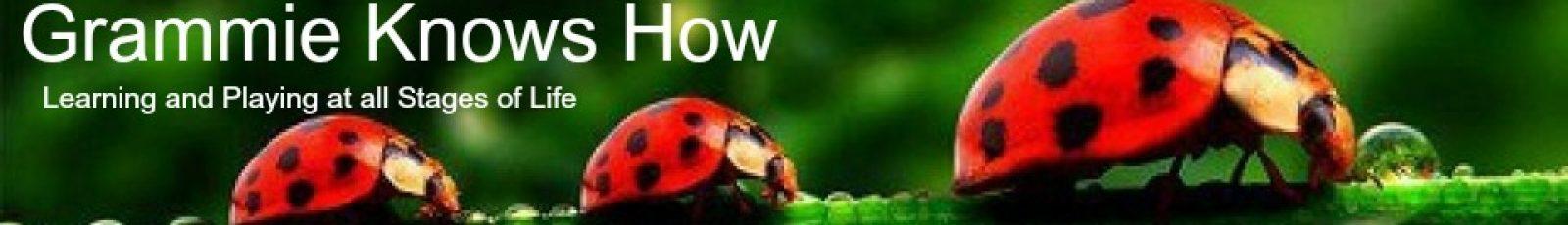 www.grammieknowshow.com