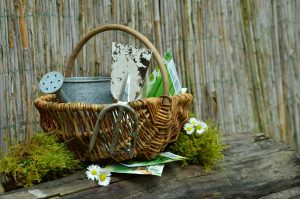 gifts for gardeners, Christmas gifts for gardeners, inexpensive gifts for gardeners