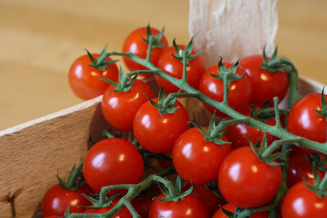 vertical gardening sytems, growing vegetables in your vertical garden, best vertical gardening systems