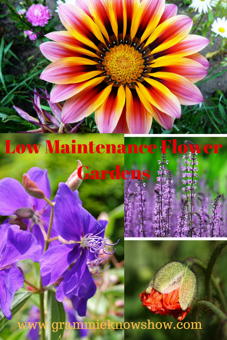 maintenance free flower gardens, low maintenance flower garden ideas, low maintenance gardening ideas