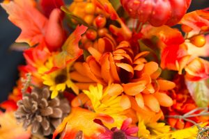 Autumn Gardening Chores That Must Be Done Now